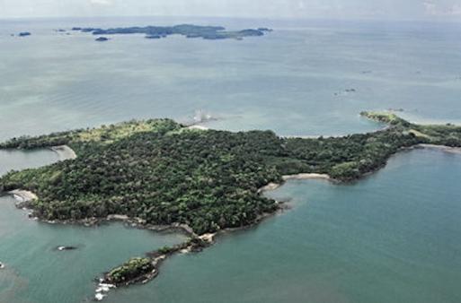 Isla-Palenque-Panama-486