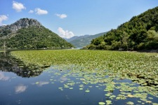 skadar_lake_montenegro_journey_cruise_water_mountains_river_nature-931032.jpg!d