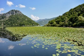 skadar_lake_montenegro_journey_cruise_water_mountains_river_nature-931032.jpg!d
