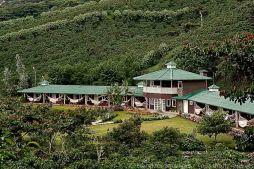 Finda Lerida, Région de Chiriqui, Panama