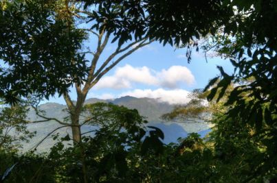 Property-Panama-Land-Boquete-24-1024x680