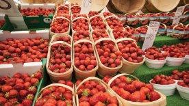 Byward-Market-Summer