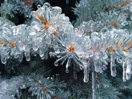 Ice-Storm 12