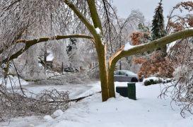 Ice-Storm 13