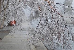 Ice-Storm 19