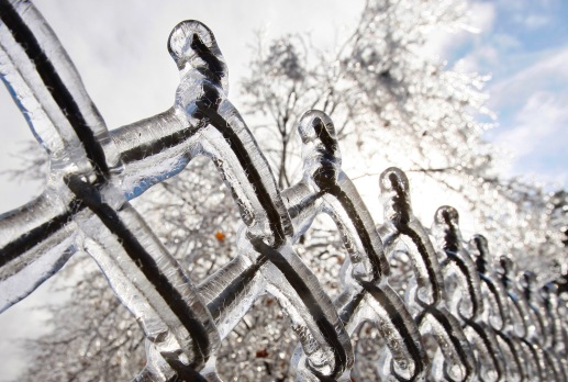 ORG XMIT: MASS102 A chain link fence and the trees behind it are covered with a thick coat of ice in the aftermath of an ice storm along a highway in Boylston, Mass., Friday morning, Dec. 12, 2008. (AP Photo/Stephan Savoia)