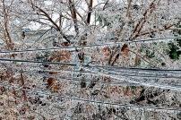 Ice-Storm 8. jpeg