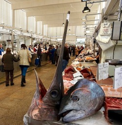 mercado central de cádiz pescado