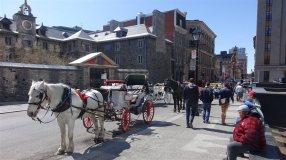 160511_o72b8_gravel-caleche-vieux-montreal_sn1250