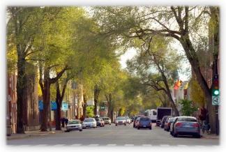 les-rues-de-montrc3a9al__007 2