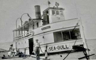 sea-gull 2 2