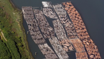 Timber_floating_in_Vancouver
