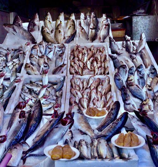 izmir marché poisson