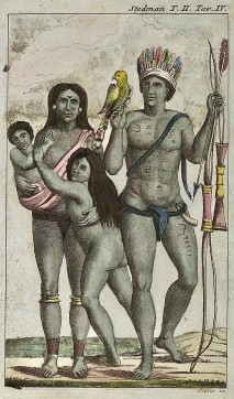 Arawak, Famille