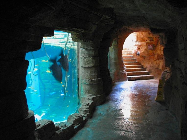 Atlantis139 2