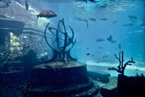 Bahamas, Atlantis, H