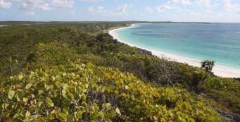 Bahamas, San Salvador beach