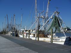 Apalachicola, bateaux 9