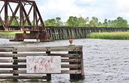 Apalachicola River, 4