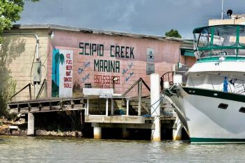 Apalachicola, Scipio Creek 1