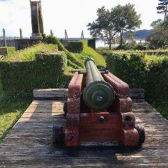 Carpoline, Canon rouge 1