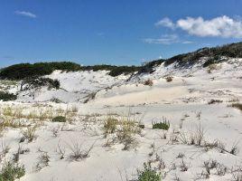 Sugar Sand, 2, Fl.