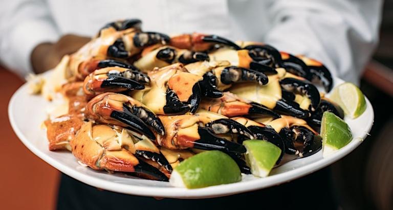Stone-crab .jpg